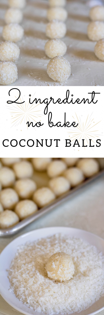 2 ingredient no bake coconut balls