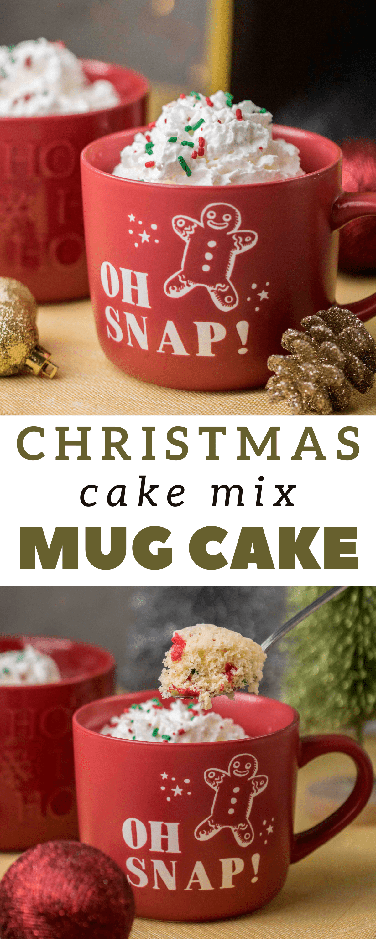 Easy Festive Christmas Cake Mix Mug Cake Lifestyle Of A Foodie