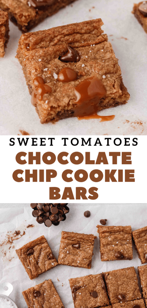 Soup plantation chocolate chip cookie bars