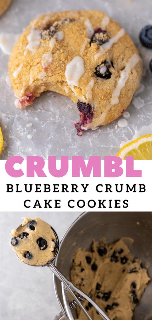 Cakey blueberry cookies