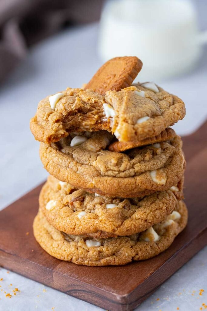 Stack of cookies with a bite taken out of one