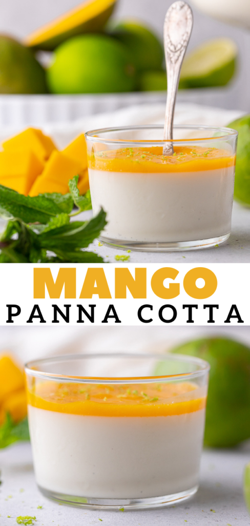 Vanilla bean panna cotta with mango coulis